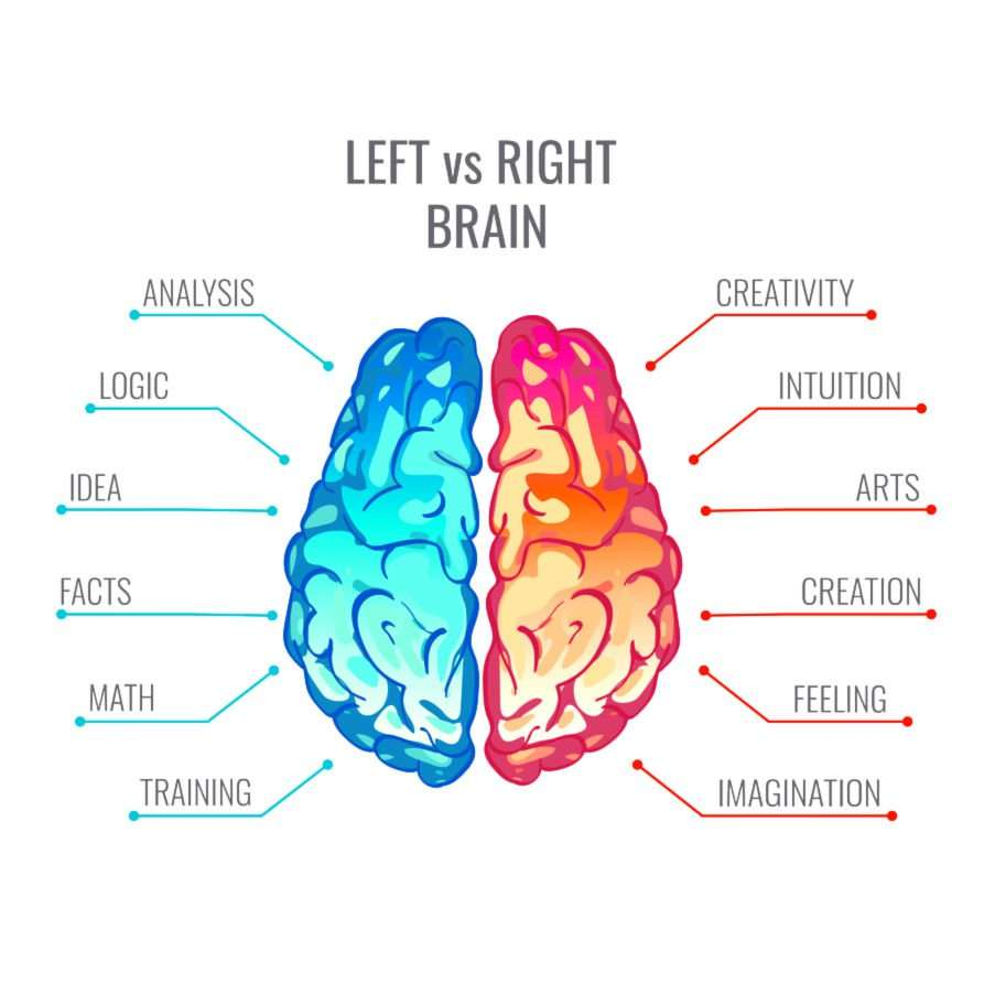 Right Brain Left Brain Test