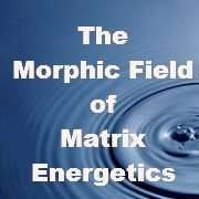 morphic field matrix13k e1600034737132